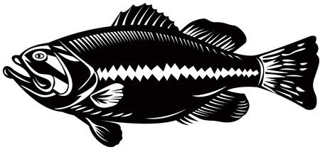 woodcut: Bass