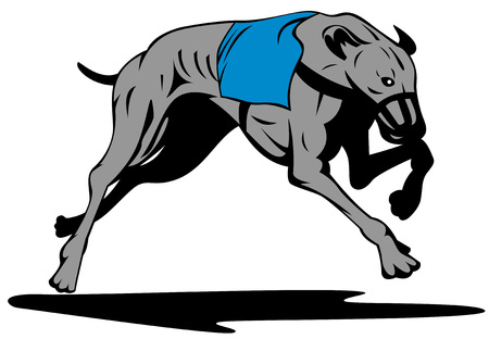 chart: Greyhound racing