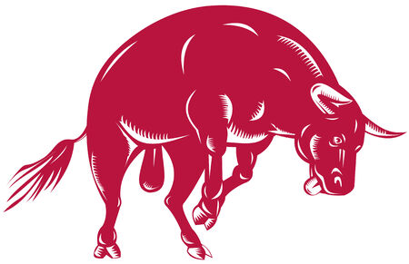 Bull charging Vector
