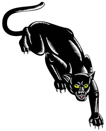 puma: Panther sulla vagano pronti ad attaccare Vettoriali