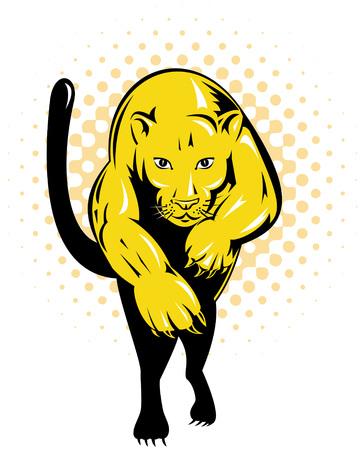 puma: Puma attacking