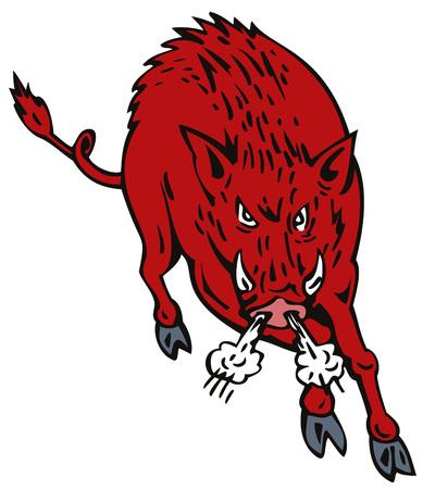 Wild Pig Stock Vector - 3624120