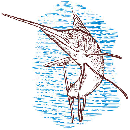 sailfish: Spearfish