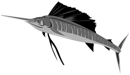 sailfish: Pesce vela