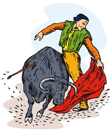 Bull fighting Vector