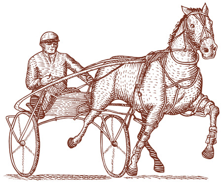 trotter: Harness racing Illustration