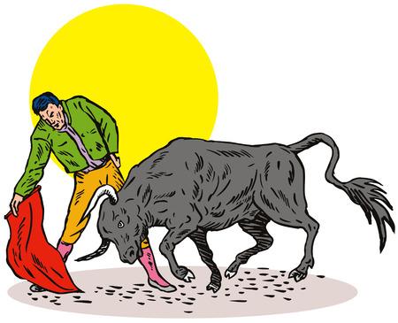 bullfighter: Bull fighting