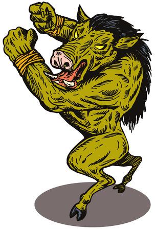 wild  boar: Superhero wild boar