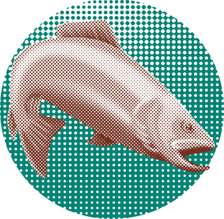 salmon leaping: Trout halftone dots