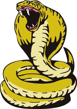 serpents: King Cobra Stock Photo