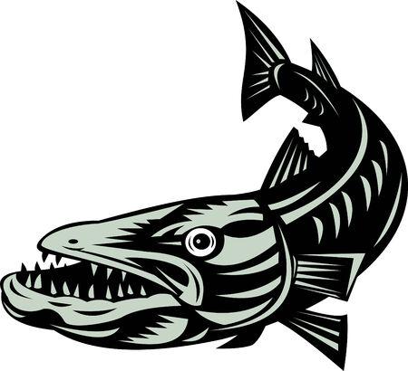 Barracuda fish Stock Vector - 4325986