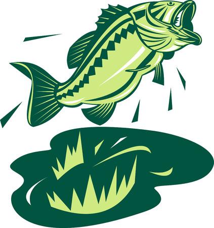 largemouth bass: Bass Largemouth a punto de coger una rana