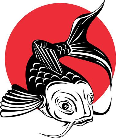 vector fish: Koi carp