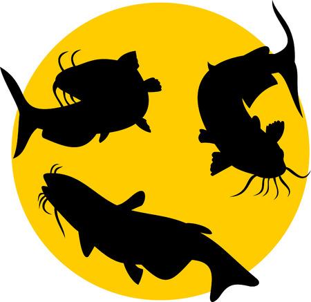 Catfish silhouette