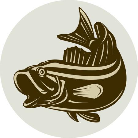 sunfish: Bass