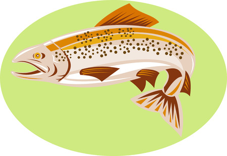 spotted: Spotted trout Illustration