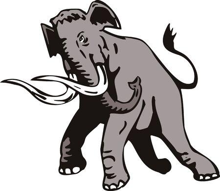 black mammoth: mammoth Stock Photo
