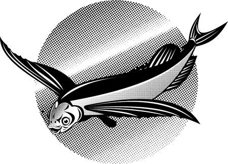 fullbody: pez volador  Vectores