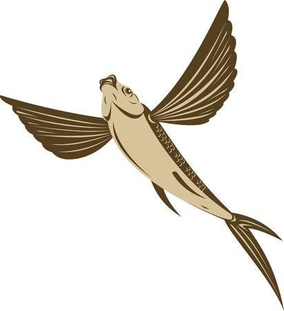 poisson volant Vecteurs