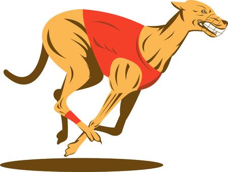 chart: Wyścigi psów Greyhound