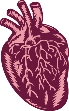 human heart done in woodcut style. photo