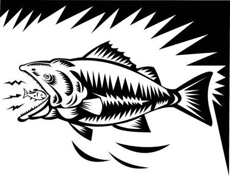 illustration of a big fish eating a small fish Stock Illustration - 6233960