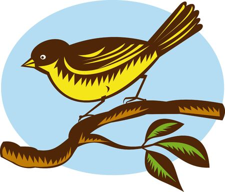 fantail: illustration of a New Zealand fantail bird on a branch done in retro woodcut style