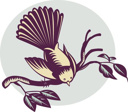 fullbody: illustration of a New Zealand fantail bird on a branch done in retro woodcut style. Stock Photo