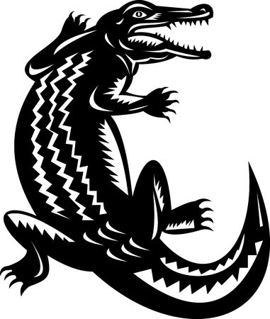 caiman: illustration of a crocodile done in retro woodcut style.