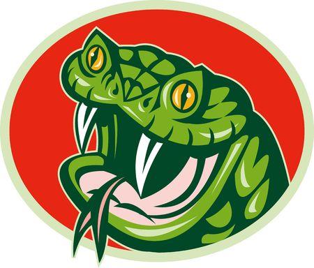 elipse: Ilustraci�n de una serpiente de v�bora establece dentro de una elipse