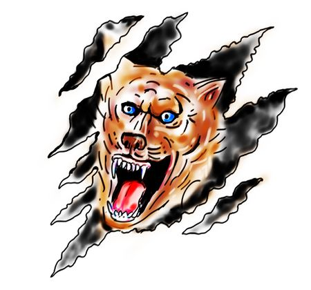 timber wolf: drawing of an Angry wolf inside paw tear scratch marks