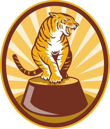 illustration of a Angry tiger sitting on top of plinth set inside an oval with sunburst Stock Illustration - 7369633