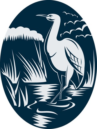 wading: illustration of a Heron wading in the marsh or swamp done in retro woodcut style. Stock Photo