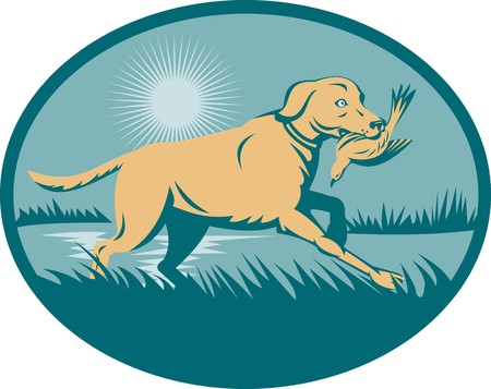 illustration of a trained Retriever  dog with bird on wetland  set inside an ellipse. illustration