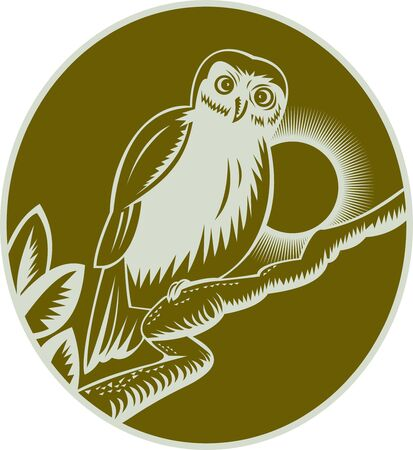 illustration of an owl perched on a tree branch Stock Illustration - 7490175
