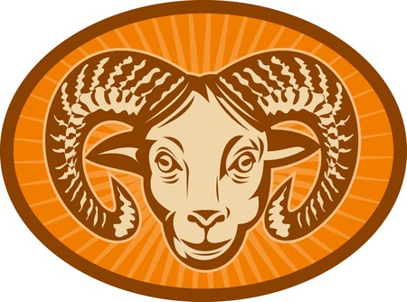 bighorn: illustration of a Bighorn sheep or ram head with sunburst in the background set inside an oval.