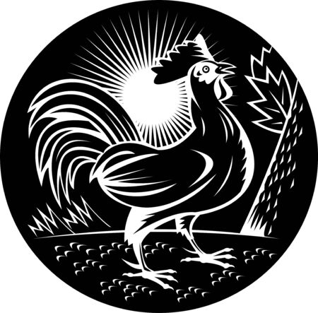 illustration of a Rooster cockerel crowing done in woodcut style and in black and white Stock Illustration - 7490192