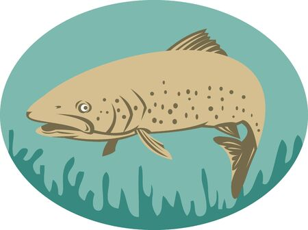 speckled trout: illustration of a Spotted or speckled Trout swimming done in retro style