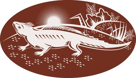 new zealand landscape: illustration of a New Zealand tuatara looking up with landscape in background