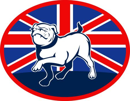 illustration of a Proud English bulldog marching with Great Britain or British flag at background set inside an oval. illustration