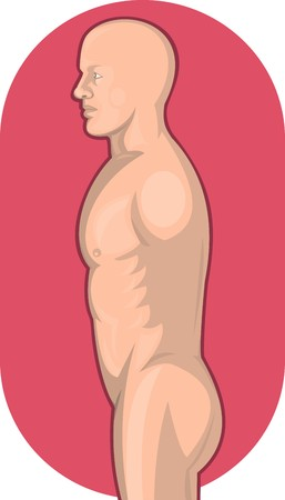 waist up: illustration of a Male human anatomy standing side view from waist up Stock Photo