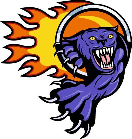 attacking: Ilustraci�n de una pantera atacar con anillo de fuego en segundo plano aislado en blanco