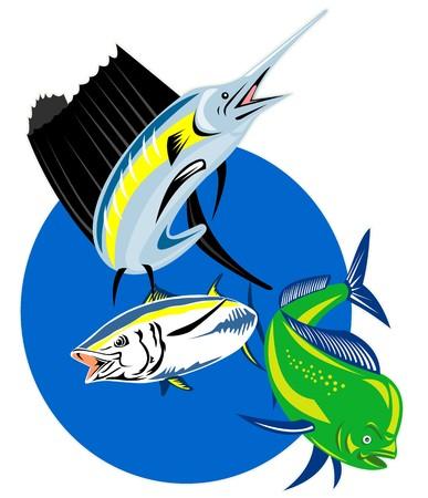 dorado: retro style illustration of a Sailfish, dorado dolphin fish or mahi-mahi and yellow fin tuna