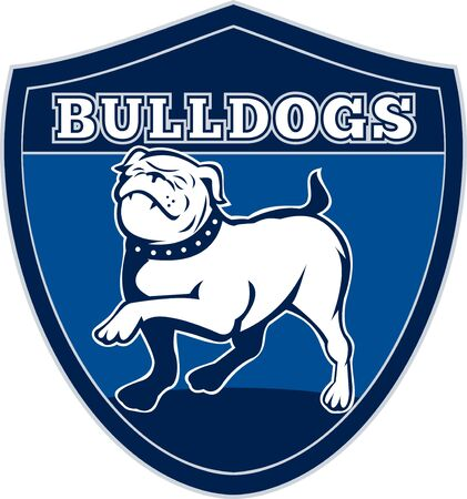 illustration of a Proud English bulldog marching with words bulldogs in background set inside a shield suitable for any sports team mascot illustration