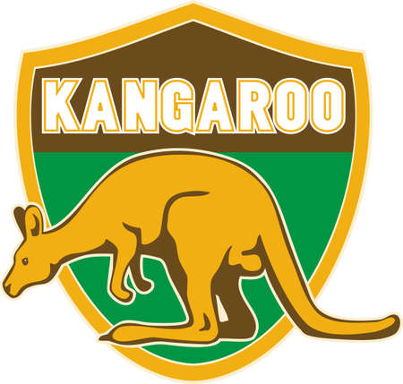 roo: illustration of a kangaroo side view set inside a shield suitable for any sports sporting club team mascot