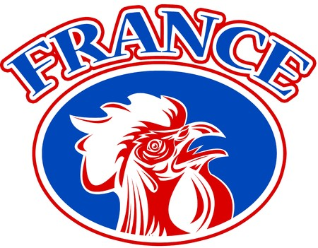 illustration of a french mascot rooster cockerel cock set inside rugby ball shape with words france  illustration