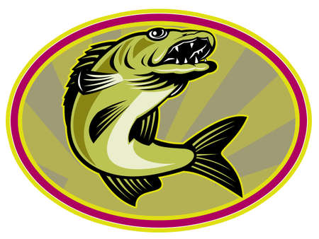 walleye: retro illustration of a walleye fish jumping set inside oval ellipse with sunburst in background