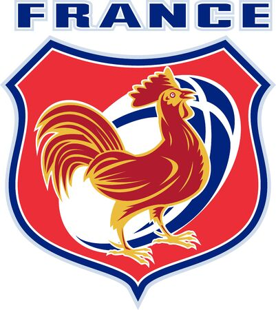 illustration of a french sport sporting mascot rooster cockerel cock set inside shield and rugby ball shape with words france illustration