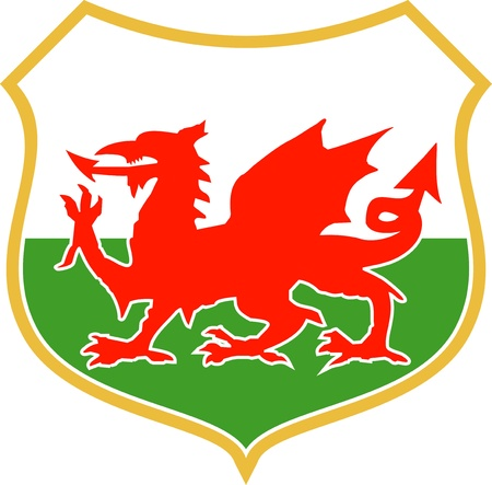 welsh flag: illustration of a red welsh wales dragon with shield in background Stock Photo