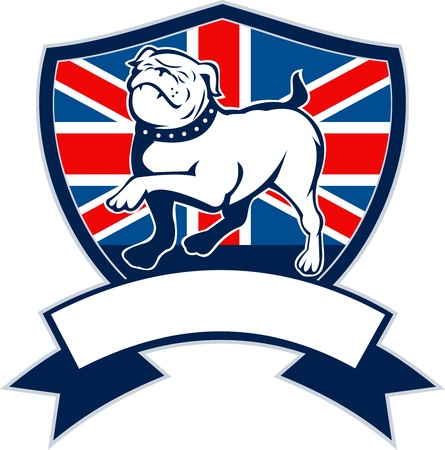 illustration of a Proud English bulldog marching with Great Britain or British flag in background set inside a shield with ribbon or scroll in foreground illustration